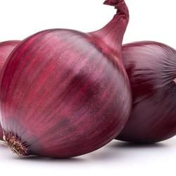 illustration ingrédient Oignons rouges